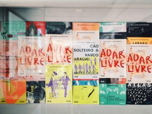 Antológica | Cão Solteiro e Vasco Araújo